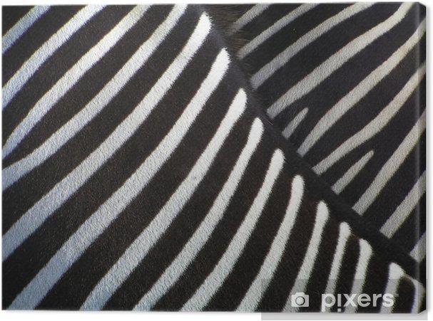 Cuadro en Lienzo Los detalles de cebra - Cebras