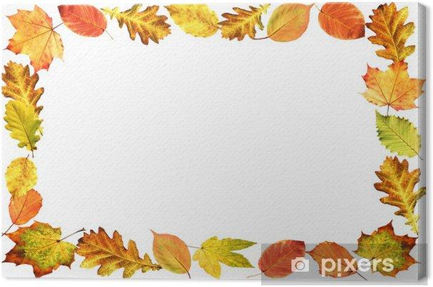 Cuadro en Lienzo Marco, follaje de otoño - Árboles