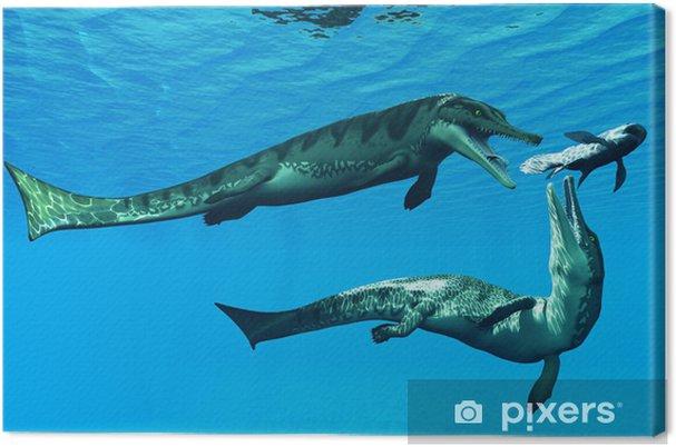 Cuadro en Lienzo Metriorhynchus Reptiles Acuáticos - Temas