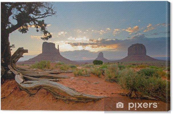 Cuadro en Lienzo Monument Valley, Utah, EE.UU. - Temas