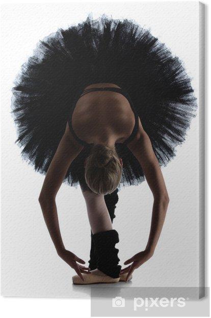 Cuadro en Lienzo Mujer del bailarín de ballet - Temas