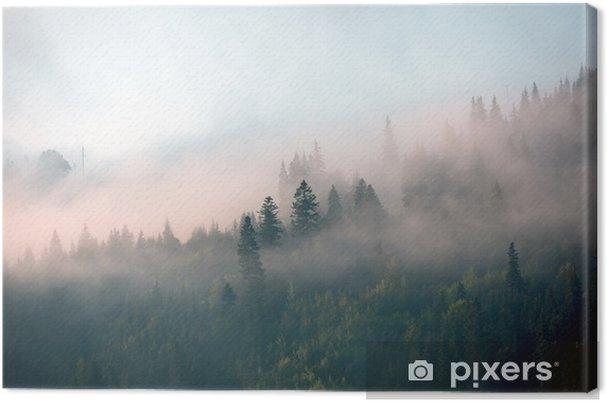 Cuadro en Lienzo Niebla de la mañana en el bosque de montaña - Paisajes