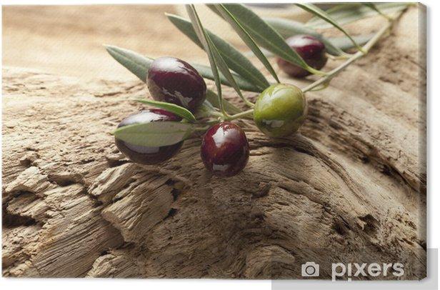 Cuadro en Lienzo Olives - Aceitunas