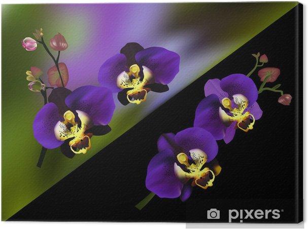 Cuadro En Lienzo Orquideas Azules Ramas Sobre Fondo Oscuro Pixers