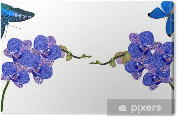 Cuadro en Lienzo Orquídeas azules y mariposas aisladas en blanco - Flores