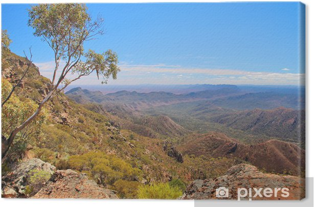 Cuadro en Lienzo Outback australiano y Flinders Ranges - Temas