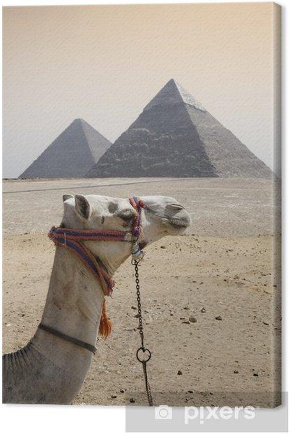 Cuadro en Lienzo Pirámides - África