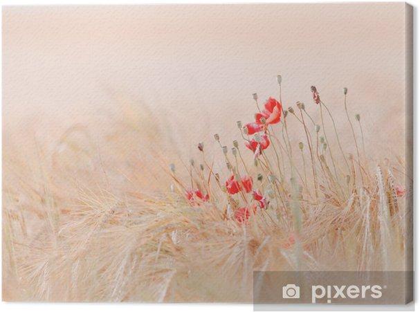 Cuadro en Lienzo Poppies - Temas