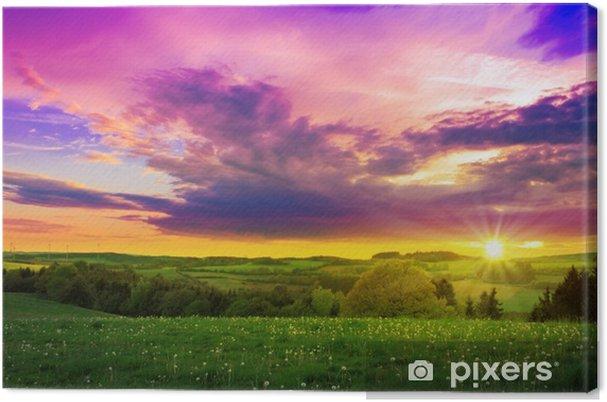 272fb8dee Cuadro en Lienzo Puesta de sol de primavera sobre el campo verde ...