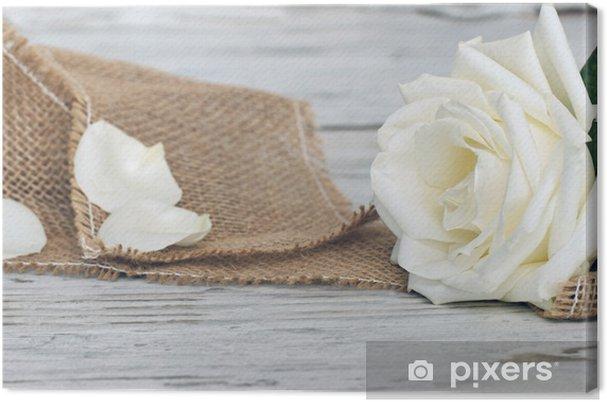 Cuadro en Lienzo Rosa Blanca - Temas