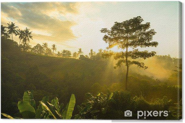 Cuadro en Lienzo Salida del sol sobre la selva - Temas