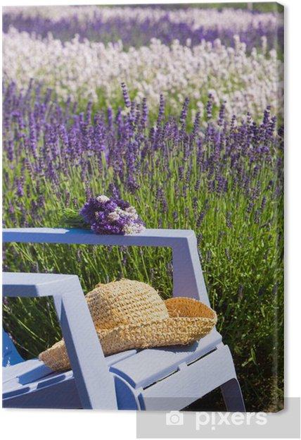 Cuadro en Lienzo Silla azul en un campo de color púrpura de la lavanda - Temas