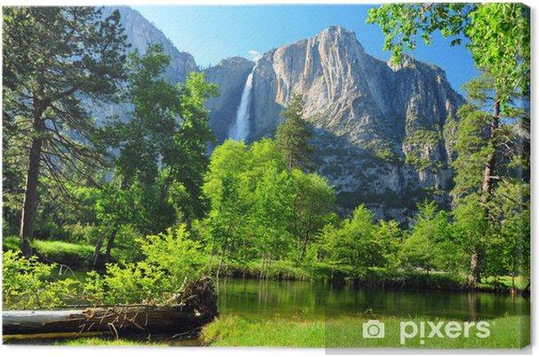 Cuadro en Lienzo Superior Yosemite Falls, Yosemite NP, California - América