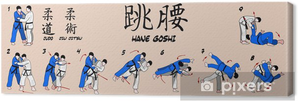 Cuadro en Lienzo Tiro Judo primavera cadera - Deportes extremos