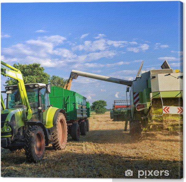 Cuadro en Lienzo Tractores y cosecha - Temas