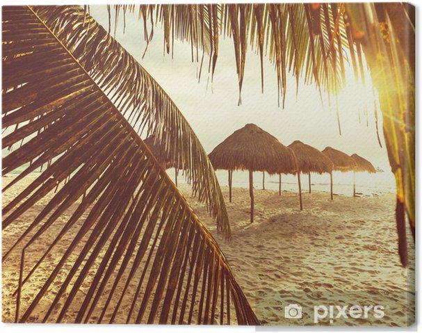 Cuadro en Lienzo Tropical beach - Vacaciones