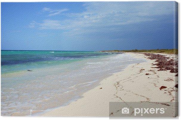 Cuadro en Lienzo Tropical beach - Agua