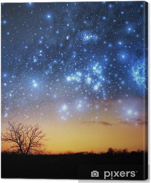 Cuadro en Lienzo Un solo árbol con el fondo hermoso espacio - Estrellas