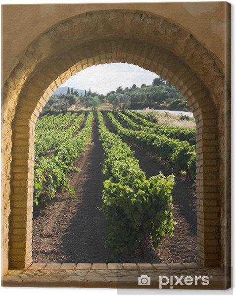 Cuadro en Lienzo Ventana arqueada en el viñedo - Temas