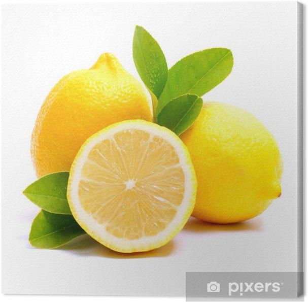 Cuadro en Lienzo Zitronen - Frutas