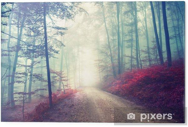 Cuadro en vidrio Camino forestal magia del vintage - Temas