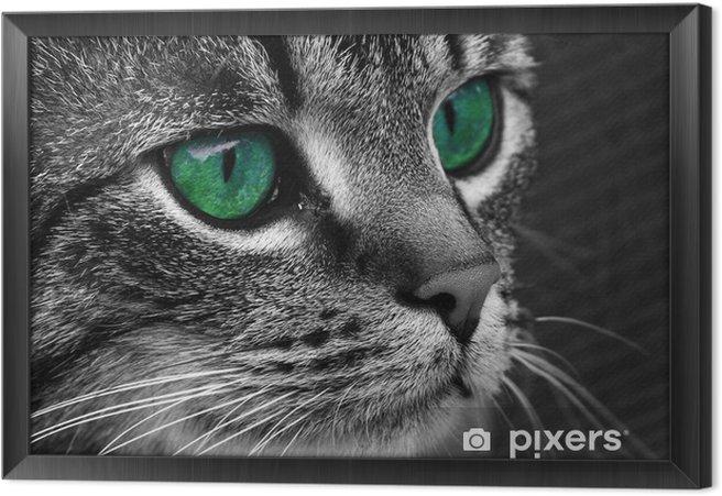 Cuadro Enmarcado Cat3 - Temas