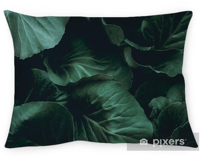 Decoratief sierkussen Plant achtergrond - Grafische Bronnen
