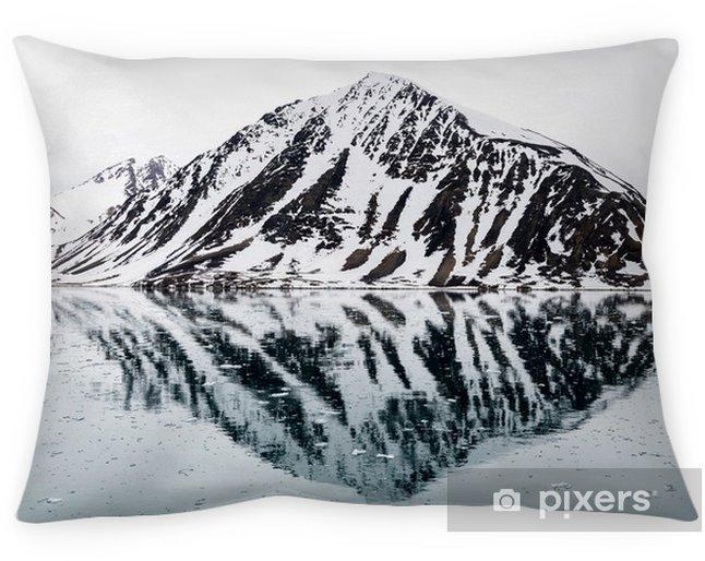 Dekorativ kudde Bergarter i arktiska - Resor