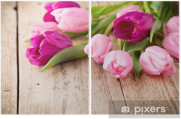 Tulip. Diptych - Themes