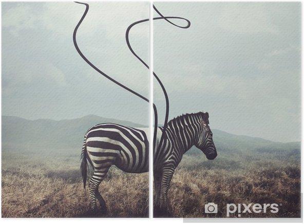 Dittico Zebra e strisce - Animali