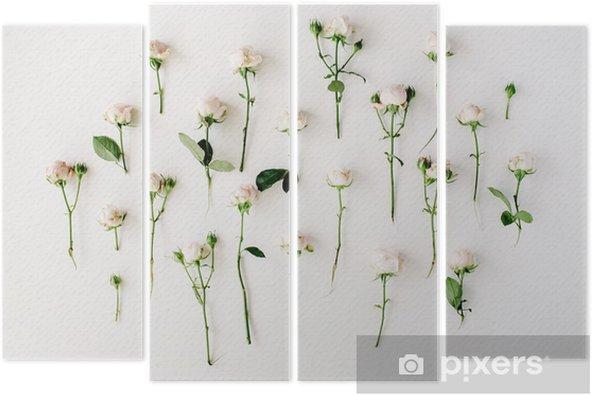 Dört Parçalı Beyaz zemin üzerine gül. düz yatıyordu, üstten görünüm - Çiçek ve bitkiler