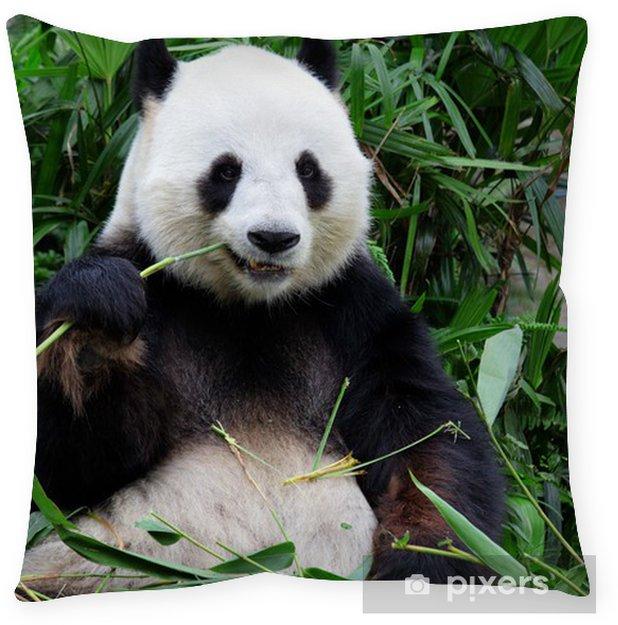 Giant Panda Bear Eating Bamboo Floor Pillow Pixers 174 We