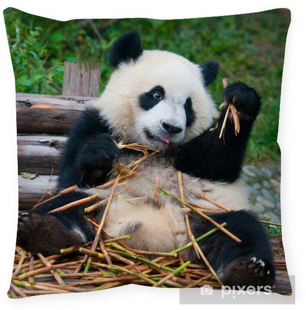 Giant Panda Eating Bamboo Floor Pillow Pixers 174 We Live