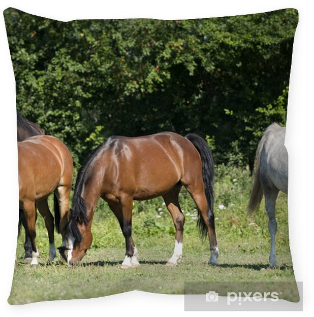 Stado Koni Floor Pillow • Pixers® • We Live To Change
