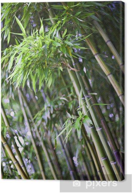 Bambus I En Japansk Have Fotolaerred Pixers Vi Lever For