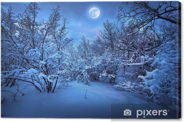 Moonlight nat i vinter træ Fotolærred -