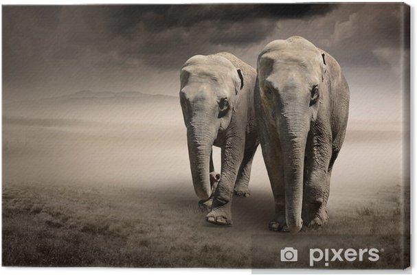 Par elefanter i bevægelse Fotolærred -