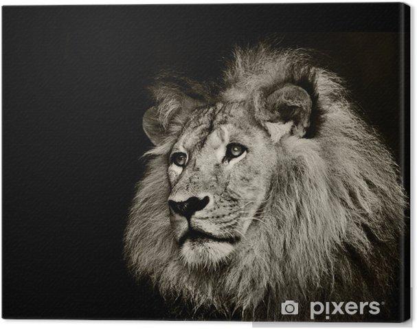 Stærk løve Fotolærred -