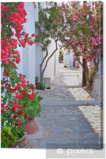 Stille back street i lille traditionelle græske landsby Fotolærred -
