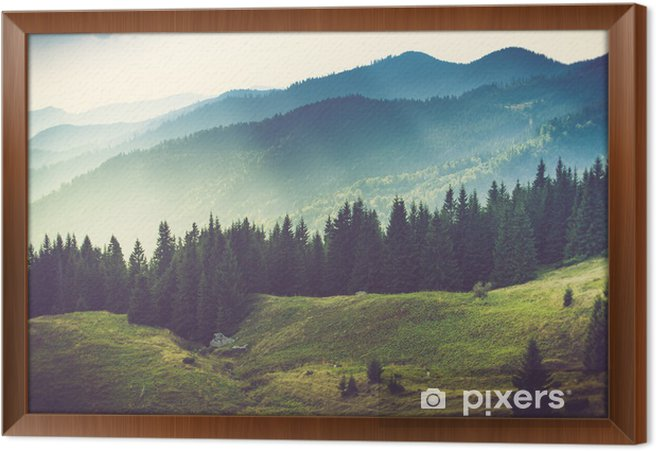Beautiful summer mountain landscape. Framed Canvas - Mountains