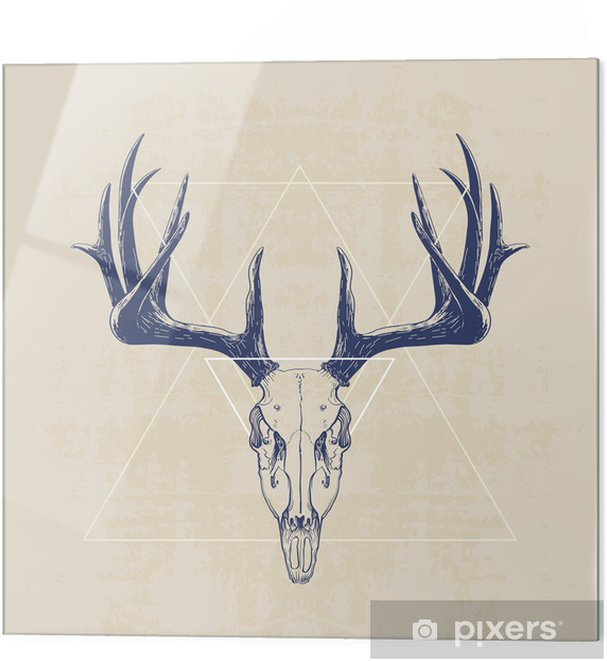 Glass print deer skull - Mammals