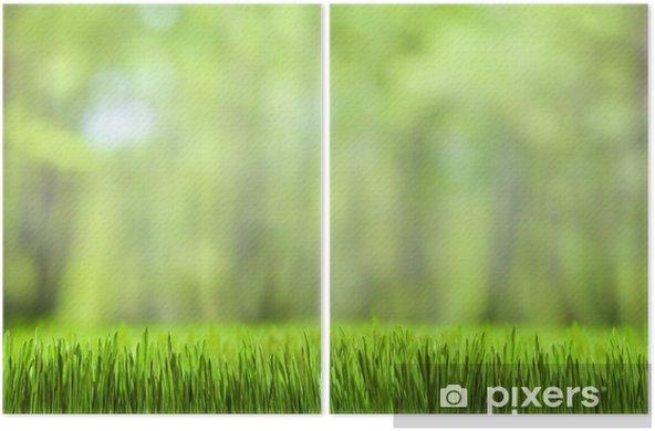 Masaüstü Duvar Kağıdı Yeşil çimen Ve Orman Doğa Arka Plan Iki