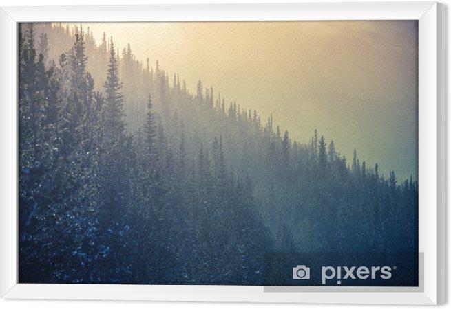 Ingelijst Canvas Colorado Winter Time - Bergen