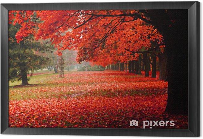 Ingelijst Canvas Rode herfst in het park - Bestemmingen