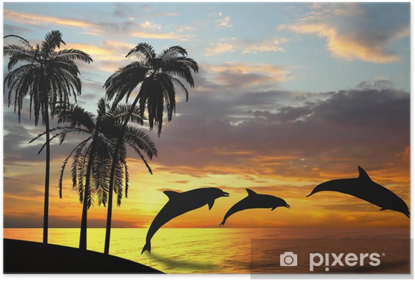 Delfiinit lähellä hawaiia Juliste -
