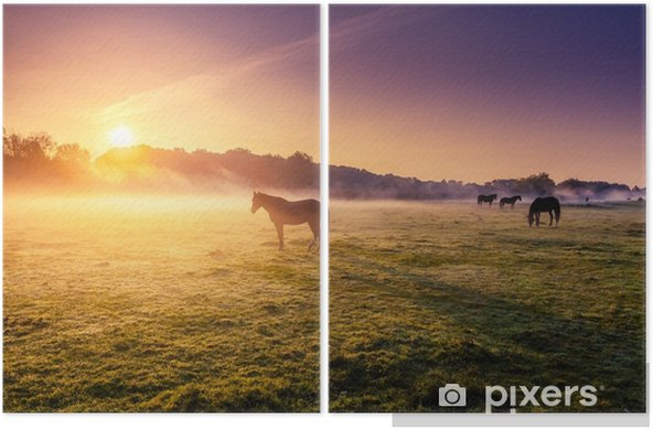 Hevoset laiduntavat laitumella Kaksiosainen - Eläimet