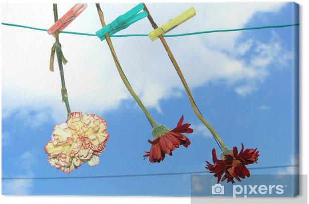 Blumen auf der wäscheleine Kangaskuva - Kukat