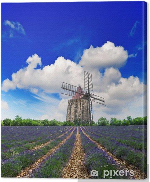 Laventeli kenttä tuulimyllyssä provence Kangaskuva - Mills and windmills