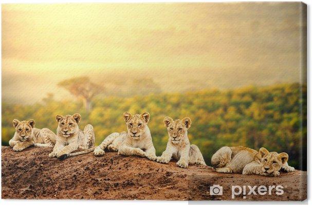 Leijonanpentuja odottavat yhdessä. Kangaskuva -
