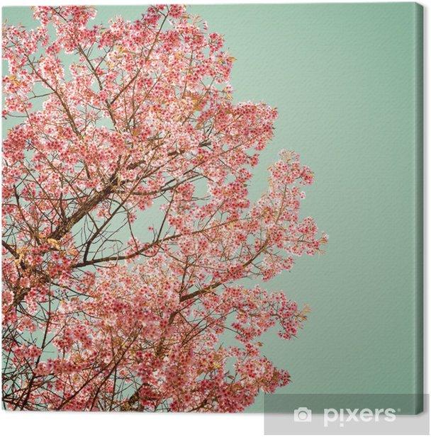 Luonnon tausta kaunis puu kirsikka vaaleanpunainen kukka keväällä - vintage pastelli värisuodatin Kangaskuva - Kasvit Ja Kukat